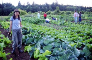 Farming_rest
